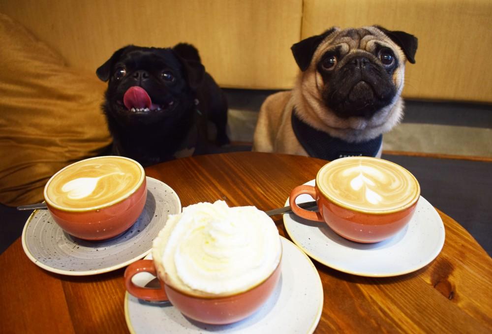 Coffees&Pugs.jpg