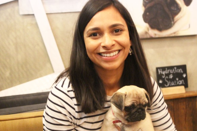 pug and lady at pop up pug cafe