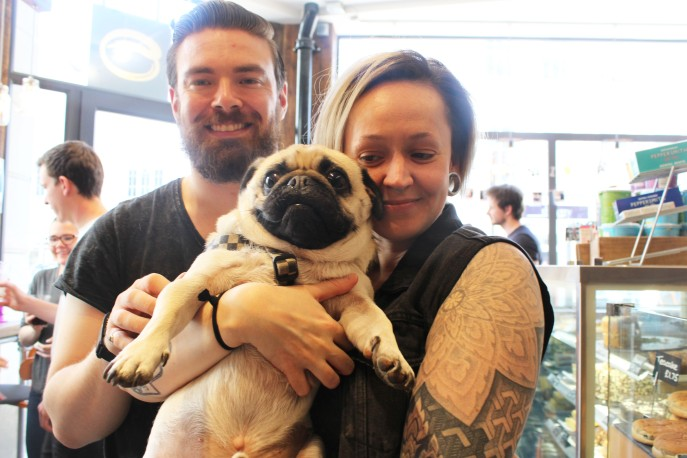 lady looks at pug lovingly at pop up pug cafe