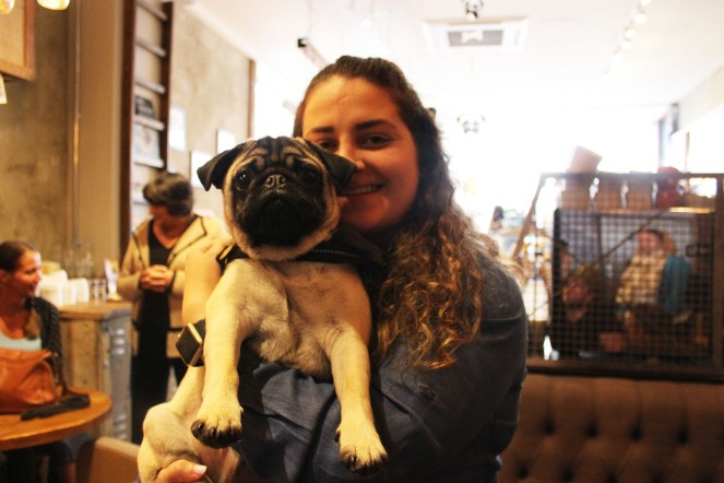girl holds her pug at pop up pug cafe