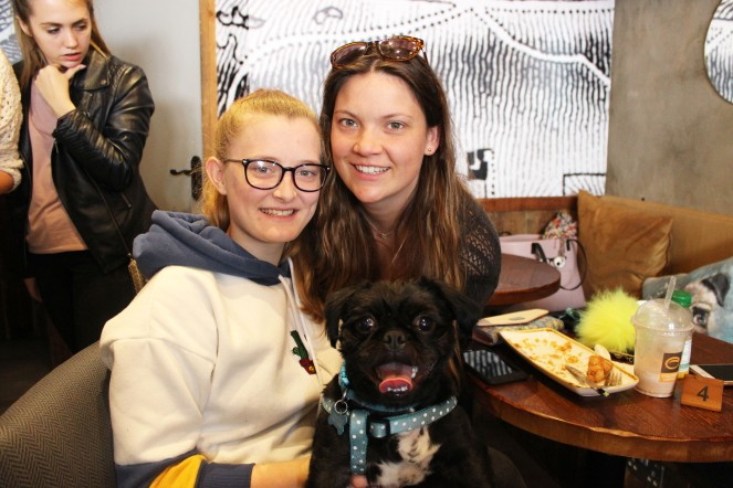 family with their pug at pop up pug cafe