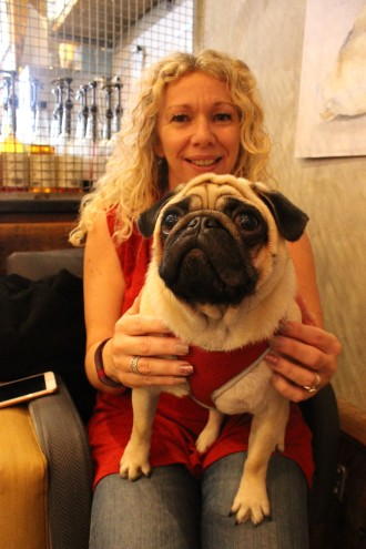 owner and her pug at pop up pug cafe