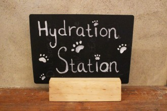 hydration station sign at pop up pug cafe