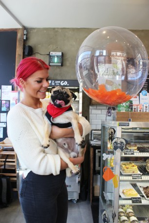 lady stand by balloon at pop up pug cafe