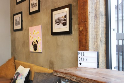 local pug art at pop up pug cafe