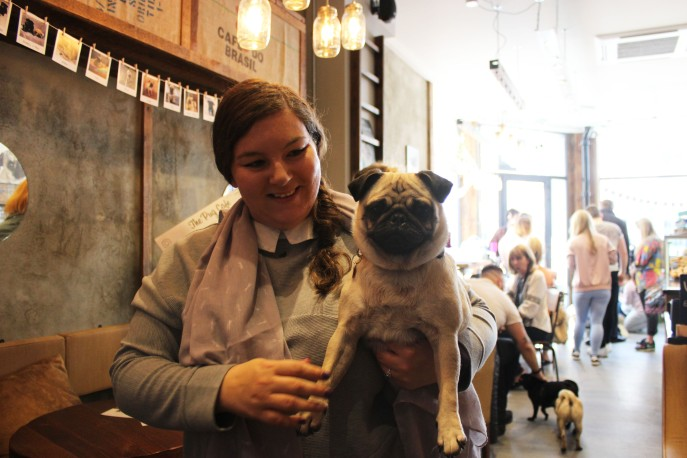 lady holds her pug at pop up pug cafe