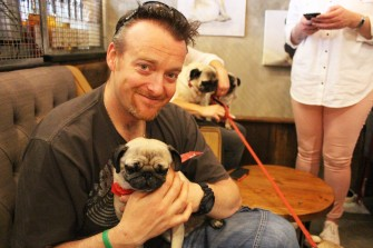 dad with his pug at pop up pug cafe