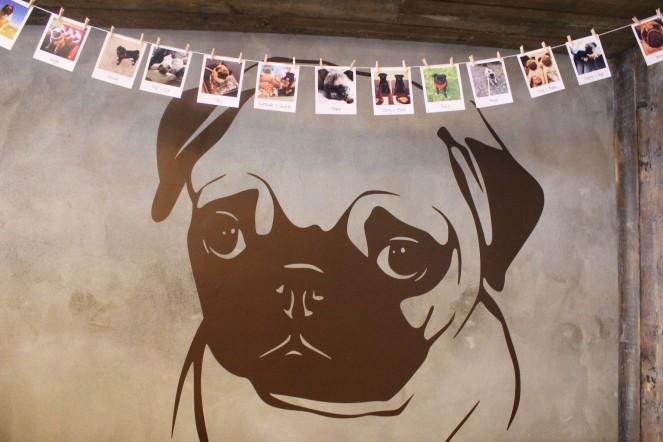 pug bunting at pop up pug cafe