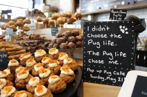 pug life sign at pop up pug cafe