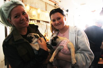 Family with their pug puppies at pop up pug cafe