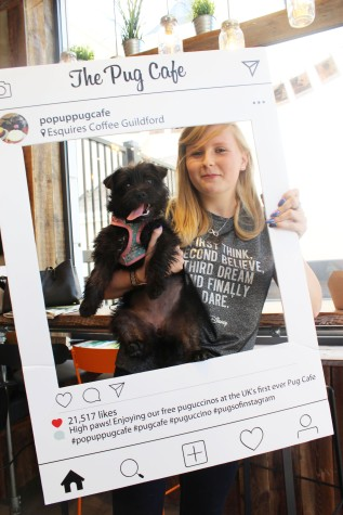 girl and pug cross at pop up pug cafe