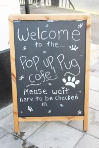 welcome sign at pop up pug cafe