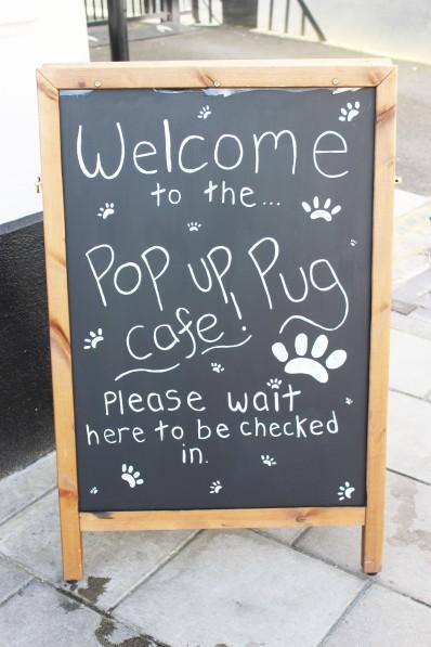 welcome sign at pop up pug cafe
